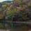 キャンプサイトの準備が整ったら、お散歩タイム。湖のほとりの木々が少しずつ色づきはじめ、とってもきれい。