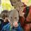 櫂くんが見つけた葉っぱ&木の枝をお面にして、ハイ、ポーズ! 子供にとっては、葉や枝も立派な遊び道具になっちゃうのです。