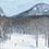雪質の素晴らしさ! いますぐ滑りたくなりました(ボーゲンしかできないけど)。お世話になったのは、「水上高原スキーリゾート」。
