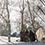 この日のイベントや犬ぞりのレッスンに参加していたみなさまもご招待。人生初雪上BBQをEnjoyしてくれました。